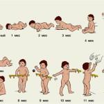 Календарь развития ребенка до года